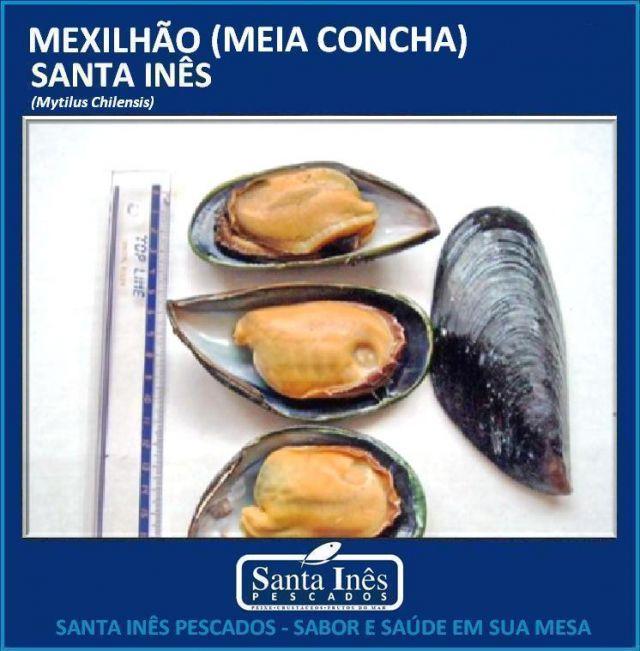 MEXILHÃO MEIA CONCHA