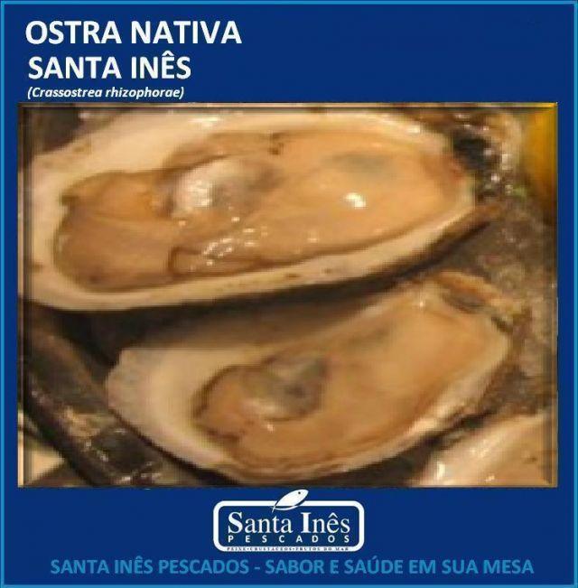 OSTRA - INTEIRA VIVA NA CONCHA