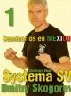 Mexico Seminar 1 - Dmitry Skogorev  t225-52