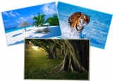 20 Folhas Papel Fotográfico À Prova D´água 230g, A4