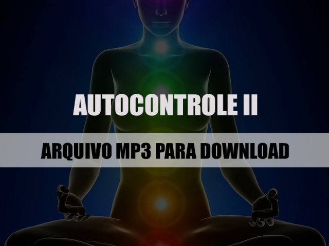 Autocontrole II mp3