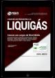Download Apostila LIQUIGÁS 2018 - Comum aos cargos de Nível Médio (PDF) NovaConcursos