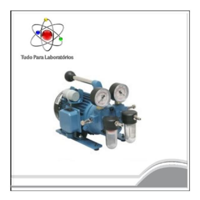 Bomba de Vácuo - Tipo palheta vácuo/compressor