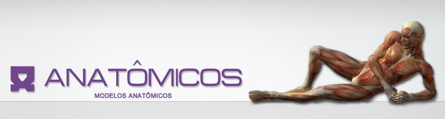 Anatômicos - Shopping de Modelos Anatômicos, Simuladores Avançados e Linha Completa de Microscópios