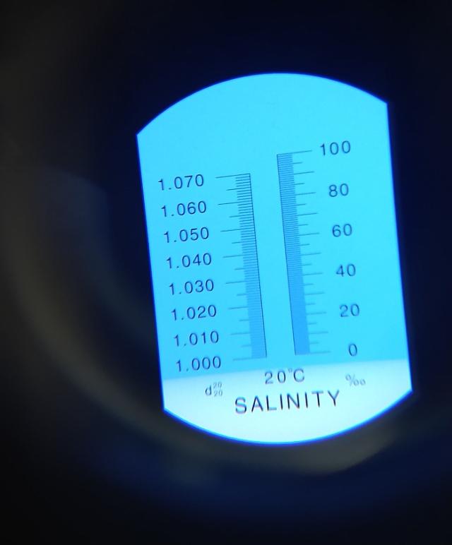 Salinômetro manual faixa de 0 a 100 partes por mil (ppm)  LABORCHEMIKER LCK-9BX100 ou Q7673
