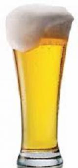 Pilsen iniciante - cerveja refrescante, aromática, corpo leve  ricas notas de malte amargor equilibrado espuma branca e cremosa.